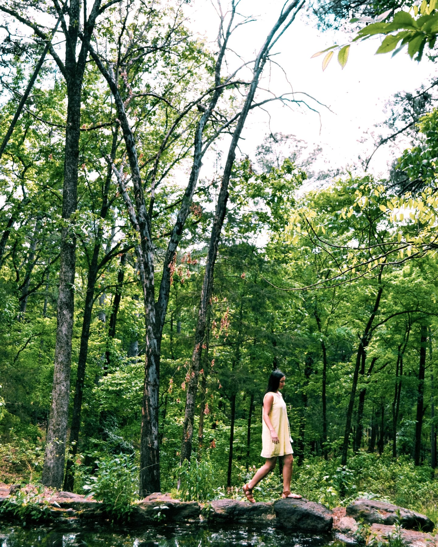 12 THINGS YOU'LL FIND IN TYLER STATE PARK