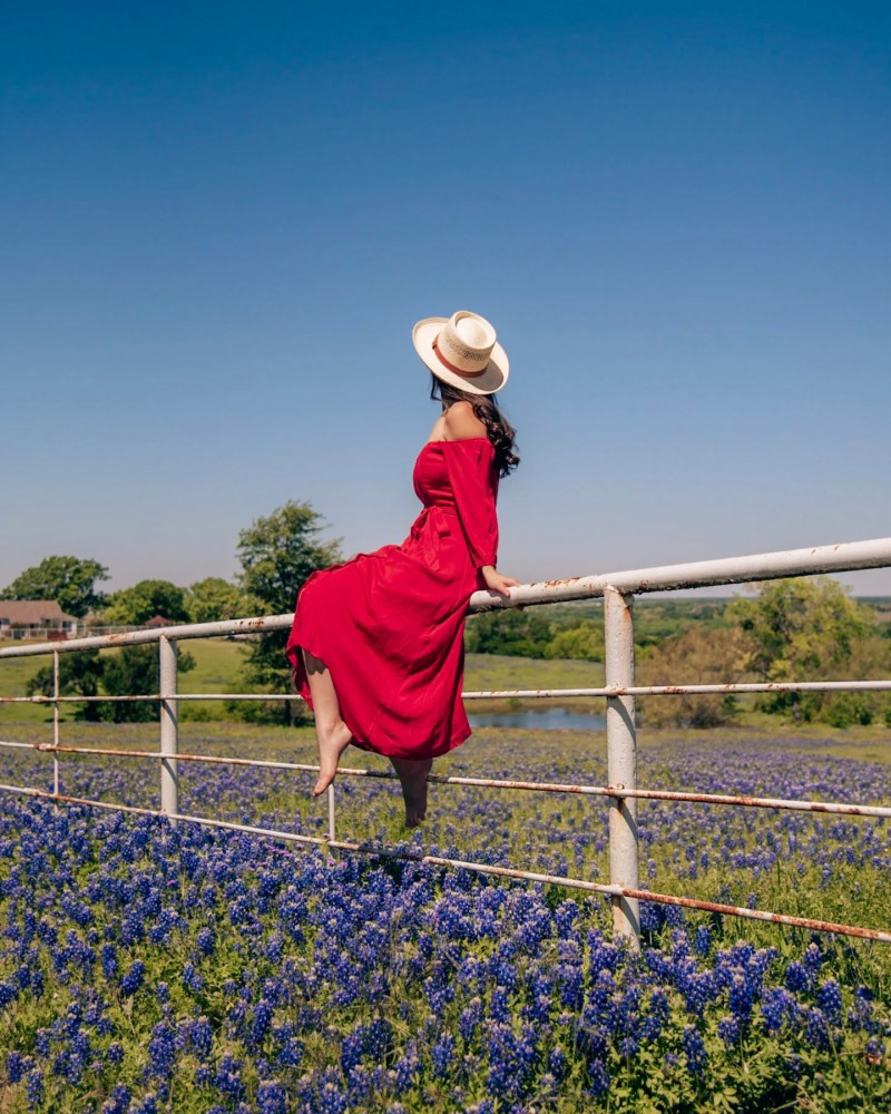 girl on fence in bluebonnets