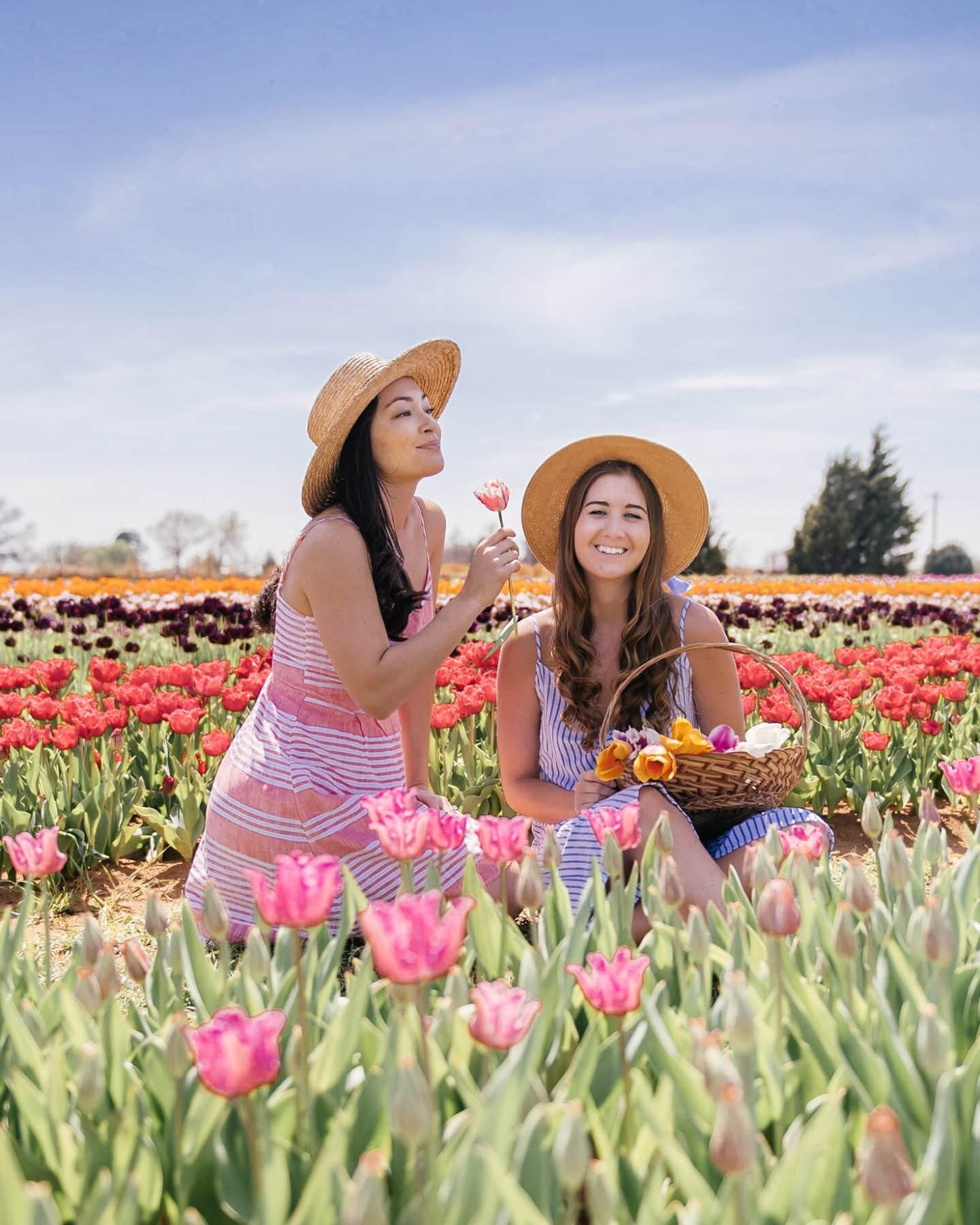 two girls in tulip fields