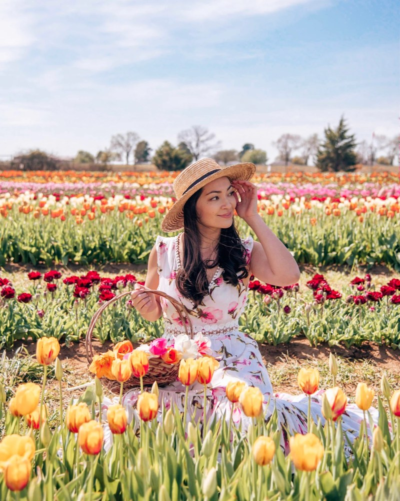 woman with basket of tulips at texas tulips