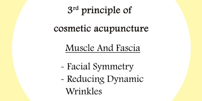 3-rd-principle of cosmetic acupuncture