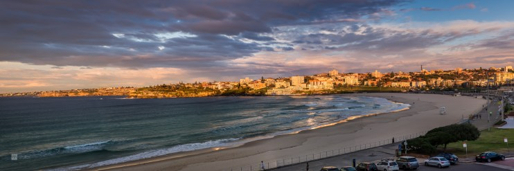 Late to Bondi