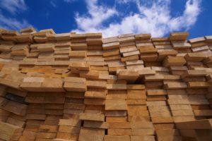 Types of Sustainable Hardwood Flooring