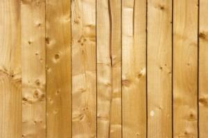 Wood Flooring Species: Pine
