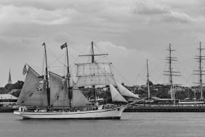 Philadelphia Gazela Tall Ship Black White