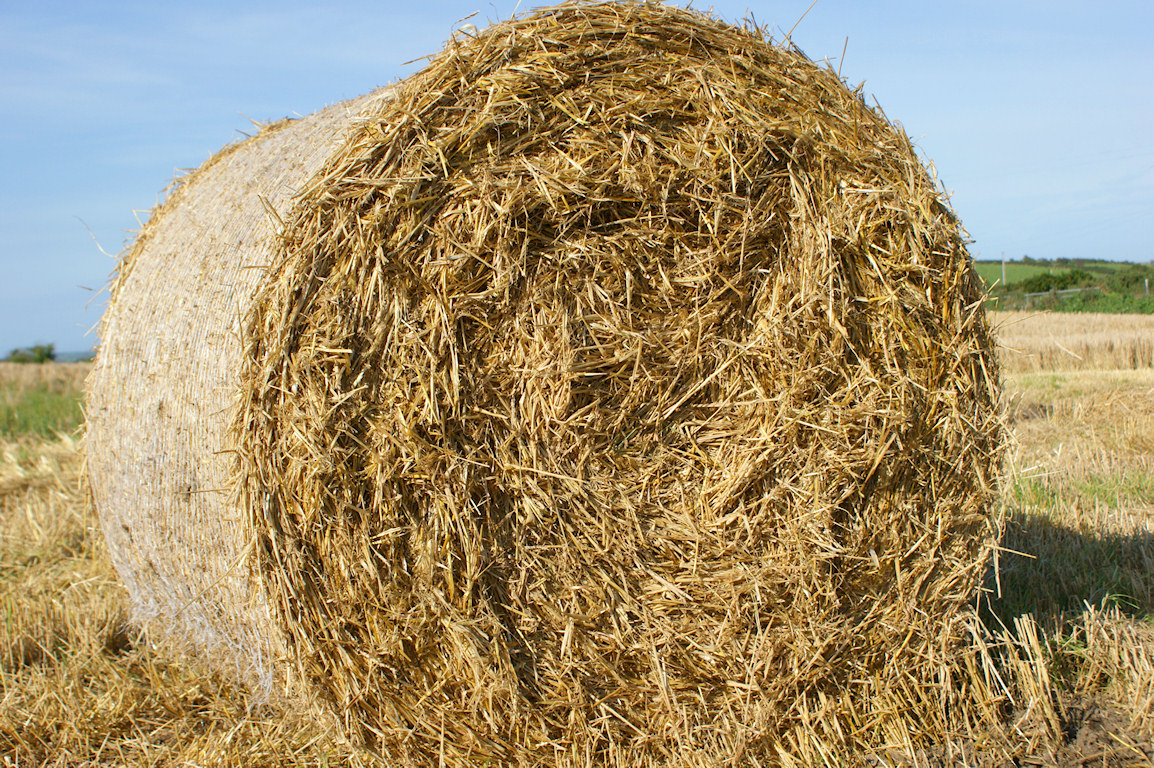 How to Make a Hay Bale Blind