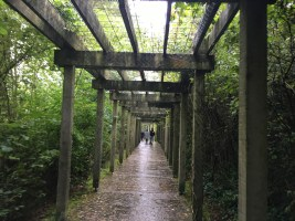 The walkway to Bru na Boinne