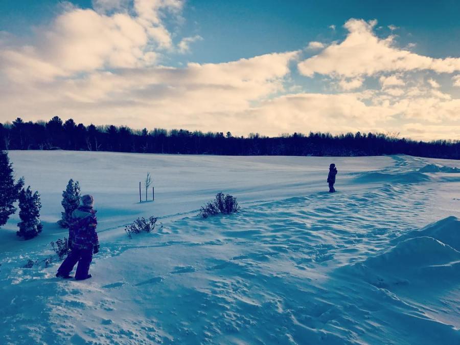 Frost Farm