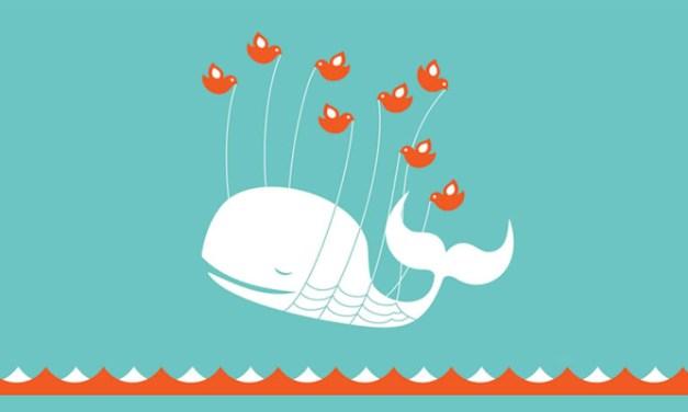 Twitter Advertising Review: Not Ready For Primetime