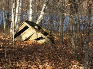 What's left of the outhouse at Lake Eden