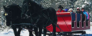 Take a romantic horse-drawn sleigh ride in Banff National Park, inside the Canadian Rockies.