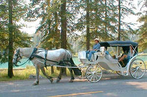 Enjoy the alpine scenery of Banff, Canada and the Canadian Rockies from a horse-drawn carriage.