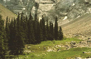 Cascade Amphitheatre at Mount Norquay, Banff National Park, Canadian Rockies.