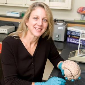 Berpotensi merusak sel otak anak