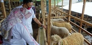 OJK Gandeng Bank Jatim Dukung Program PEN di Kab Bondowoso