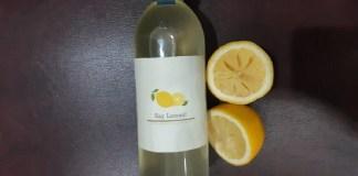 Dua Mahasiswa ITS Gagas SayLemon untuk Berdayakan Petani Lemon