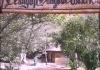 Clungup Mangrove Conservation Sebuah Harmonisasi Antara Manusia dan Alam