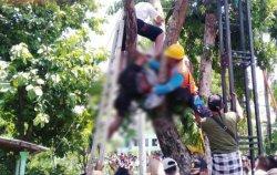 Pria di Pasuruan Tewas Tersengat Listrik Saat Tebang Pohon