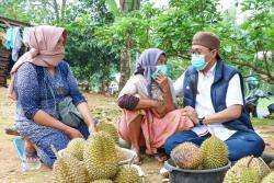 Sidak Infrastruktur Jalan, Bupati Pamekasan Blusukan Sapa Penjual Durian
