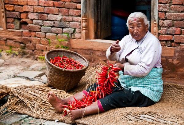 A Khokana woman preparing chillies for drying
