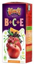 BCE 025
