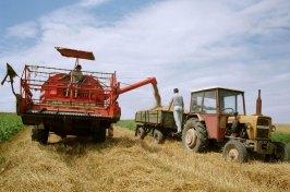 poljoprivreda-zetva-large