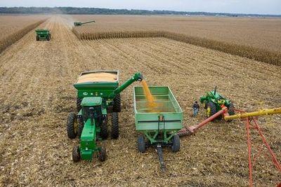 poljoprivreda-zetva-midi