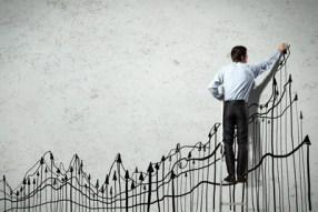 rast-gospodarstva-midi