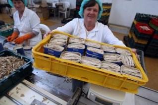 tvornica za preradu ribe