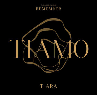 Cover Album Remember T-ARA 2016