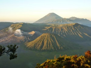 Surabaya Bromo Midnight