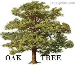 Java History from Oak to Java