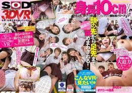 3DSVR-0560