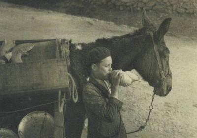 Soplando para vender pescado HAUSER Y MENET, principis del segle XX