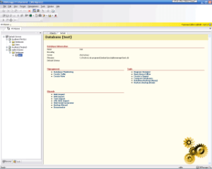 DBManager Professional 3.0