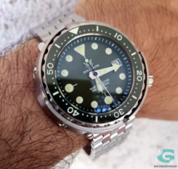 Steeldive Green Marine SD1975/GM1975