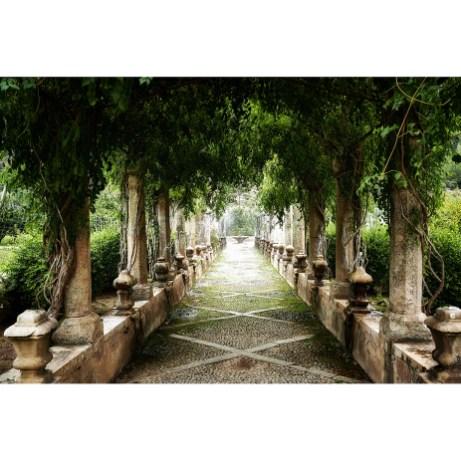 2020 Jardines de Alfabia (Buñola). Mallorca. Spain