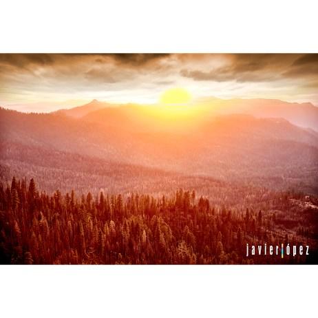 2019 SF Los Angeles . Yosemite National Park. California