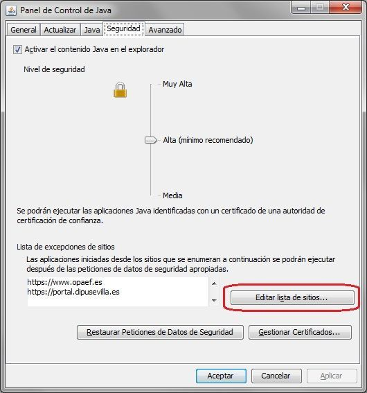 OPAEF_Seguridad_Java