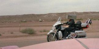 """""""Love Me Tender (Elvis Has Left the Building)"""" (2004)"""