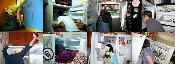 241543903: la cabeza dentro del frigorífico