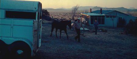 """No es País para Viejos"" (""No Country for Old Men"", 2007)"