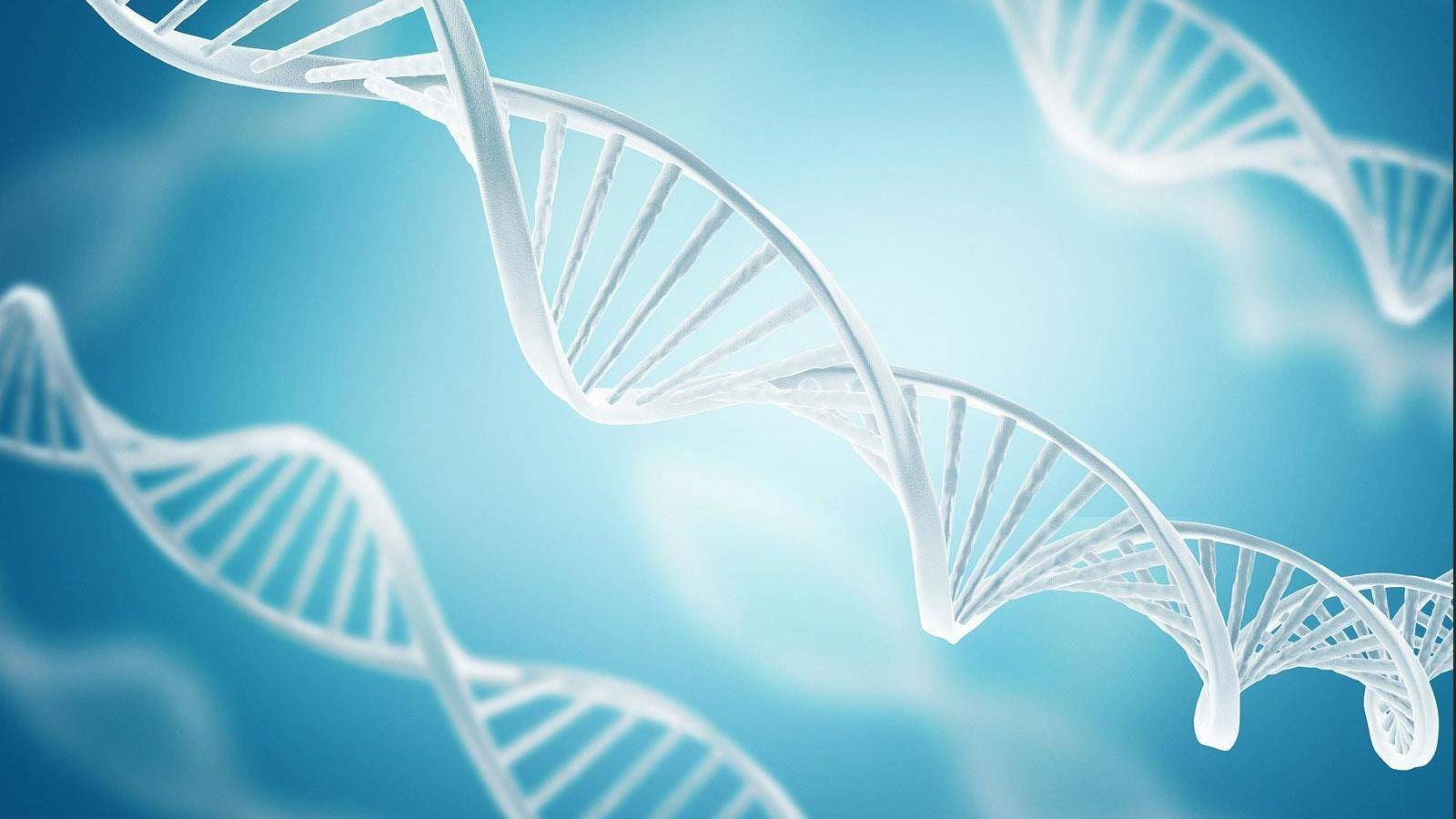 Thesis For Research Paper On Genetic Engineering