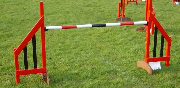 competion hurdles item 15