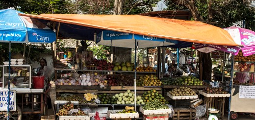 So many fruits and vegetables, with all sorts of exotic flavors, to try!