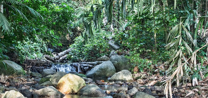 On the way to Kathu waterfalls, you pass by this area...