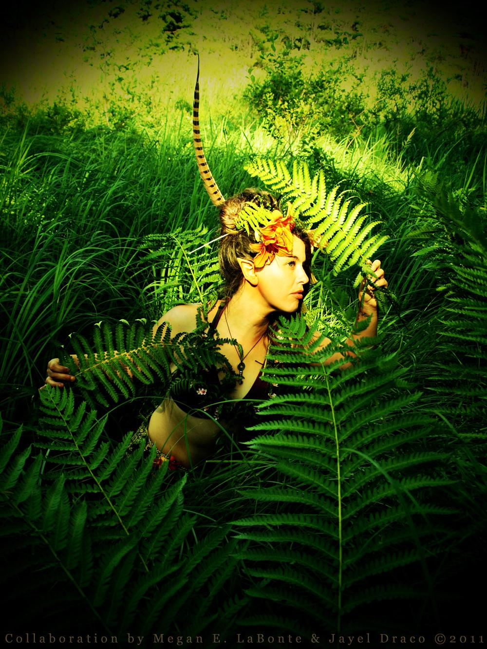 Fern Princess - Costume, Photography, and Photomanipulation by Jayel Draco