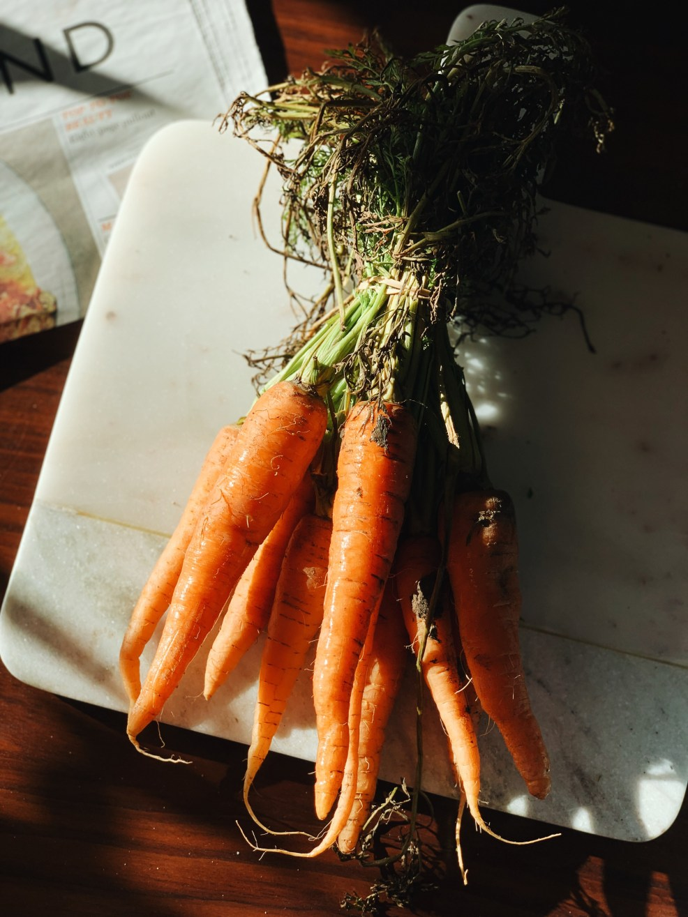 Jaye Rockett things worth photographing carrots in the light