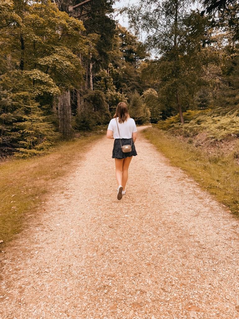 Jaye rockett new forest national park mental health