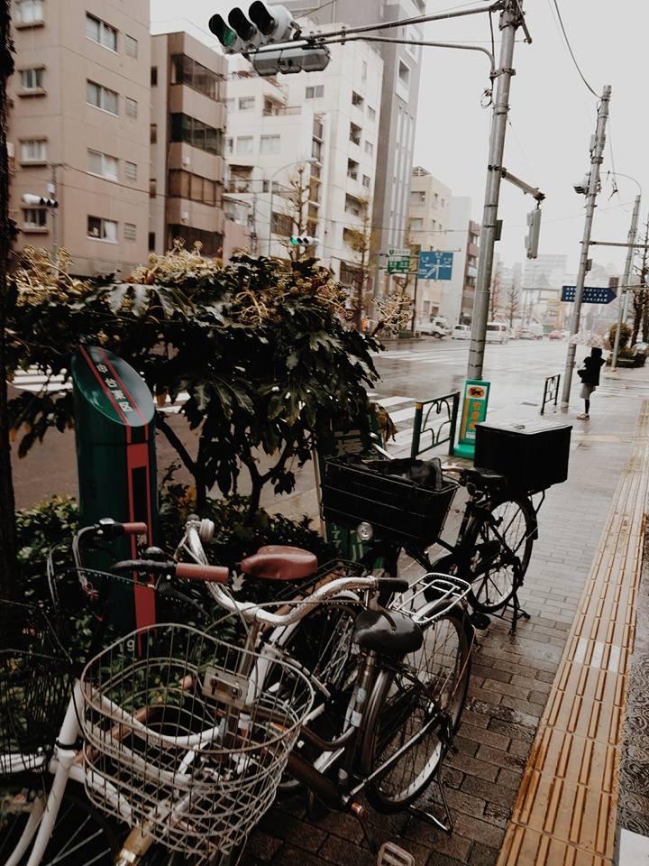 tokyo-spring-sakura-jay-e-tria-toyoko-inn-asakusa